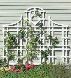 Garden Trellis Ideas - like the shape of the top