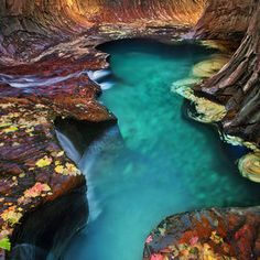 Emerald pool at Subway, Zion National Park. by Long Nguyen.