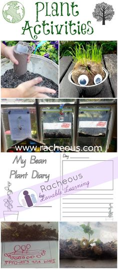 Plant Activities! [with free printable bean plant diary printable]. Learn how to make a grass head man, grow a bean plant in a ziploc bag and teach children about plants.