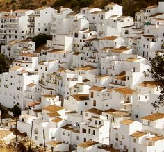 Pueblos Blancos – Andalucia white houses, charms, buildings, andalucia, places, flower fields, spain, pueblo blanco, old churches