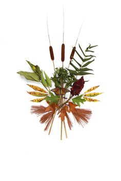 september arrangement with monarch (mary jo hoffman)
