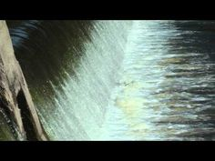 It won't let you out of the swirl. Dangerous Lowhead Dams are cause of Deaths to Canoe, Swimmers, tubing an...