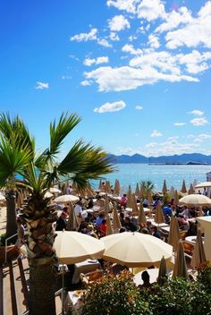 #Cannes France