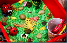 sensori bin, bug sensori, classroom, sensory tubs, bugs