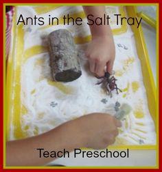 Ants in the Salt Tray by Teach Preschool