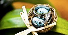 #Rings in a little #nest