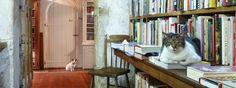 Baldwin's Book Barn. West Chester PA