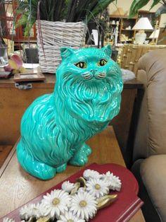 turquois cat