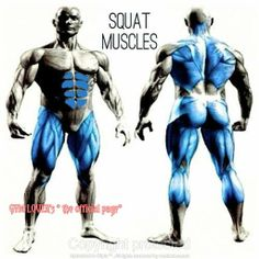 Muscle and Strength Clipix: Clip and organize everything http://www.clipix.com/9/share-byZuyg-s