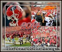 2014 The year of the Dawgs!