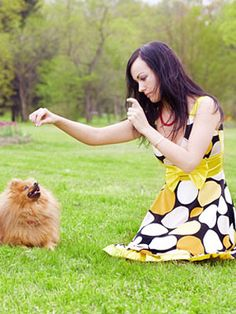 How to Teach a Dog Tricks - Dog Training Tips at WomansDay.com - Woman's Day