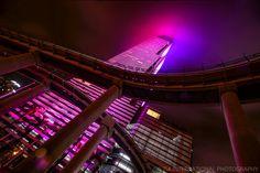 Miami Tower & Metromover Rails (pink)