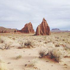 Desert freedom.