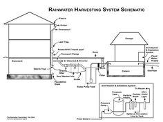 Rainwater Harvesting System Schematic