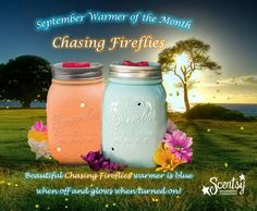CHASING FIREFLIES ..... Scentsy Sept 2014 Warmer of the Month ~ These WILL Sell Out !!!! Mason jars are SO POPULAR right now ~ ORDER ONLINE ~ SHIPS DIRECT https://spollreisz.scentsy.us