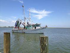 shrimp boats are a comin