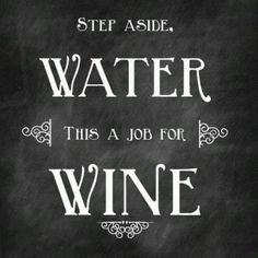 step asid, water, wines, summer parties, funni, drink, vino, wine sayings, quot