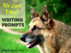 Writing prompts about dogs