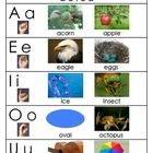 """FREEBIE:  Vowel Chart to accompany Jack Hartmann's song.  Children who are familiar with his song """"Vowel Sound Samba"""" will recognize these words for each vowel.  It's a great resource for reading folders.  You can also enlarge it as a chart and refer to it during small group reading instruction."""
