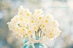 Beautiful daffodils in mason jar - photo by Aimee Pool Photography