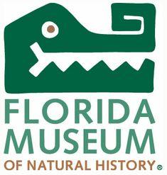 favorit place, florida museum, communiti logo, butterfli rainforest, natural history, museums, museum logojpg, natur histori, favorit museum