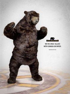 Boston Bruins Bear. @bruinsbear