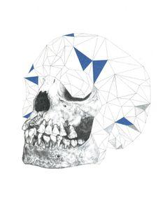 Geo skull / alex + marine