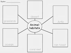 Animal Habitats Worksheets 1st Grade