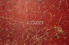 bits of grass - Bits of grass fallen onto a red metal surface