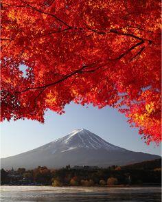 Mont Fuji mont fuji, mount fuji, monte fuji