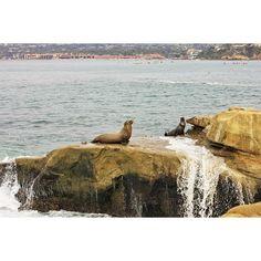 San Diego, California, US