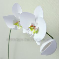 Paper Orchid Birthday Card