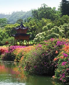 Spend a blissful morning together at the Asian-inspired gardens of @Four Seasons Resorts Lanai.