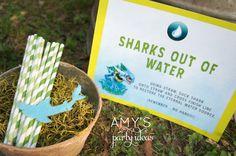 skylanders birthday party ideas games water element