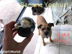 Earl's World!: Tasty Tuesday - Banana Yoghurt Frozen Kong Recipe
