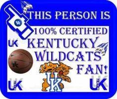 Certified Kentucky Wildcats Fan