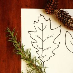 {Leaf Stencil Free Printable} Beautiful leaf hand-drawn images with labels. Great for learning about autumn leaves, or to use in fall art projects.