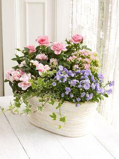 Mixed Flowering Planter - Interflora