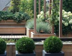 Moderne tuinen on pinterest tuin vans and doors - Eigentijds pergola hout ...