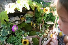 Homemade fairy garden.