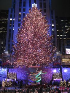 Christmas tree at Rockefeller Center, NYC 2011 - Pretty EPIC night considering it was our first time!