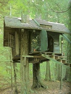 cabin - tree house.