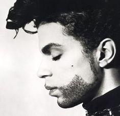 the artist, rock, musician, princ