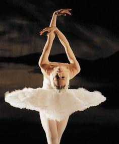 swan lake - ballet