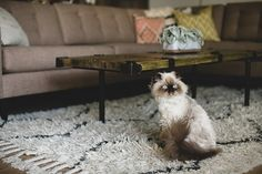 Design Sponge home tour for Kelli Murray // West Elm rug
