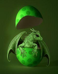 green dragon, green baby, easter, fantasi, dragons, art, fairi, babi dragon, egg