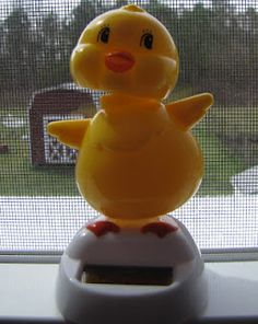 Solar powered dancing chick $1.00 in some Dollar Tree Stores. Perfect gift for elderly, shut ins, nursing homes, sick children to brighten up their day.