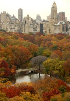 NYC. Central Park in autumn, looking East from The Oliver Cromwell (Upper West Side) / Image courtesy the Central Park Conservancy