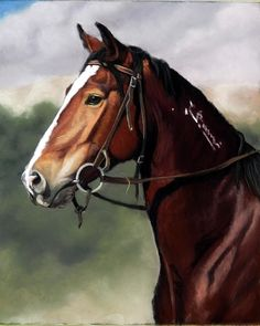 Saddle trained mustang from a prison program in Nevada. Prints available at https://www.etsy.com/shop/RoseStudiosArt