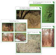 Wild Animals camouflage printable